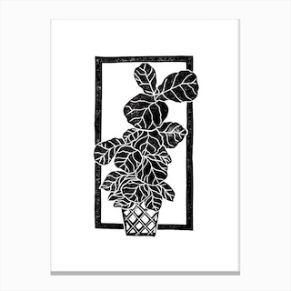 Fiddle Fig Leaf Canvas Print