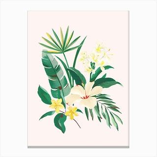Havana 3 Canvas Print