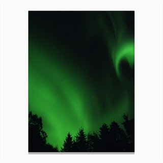 The Northern Lights 05 Canvas Print