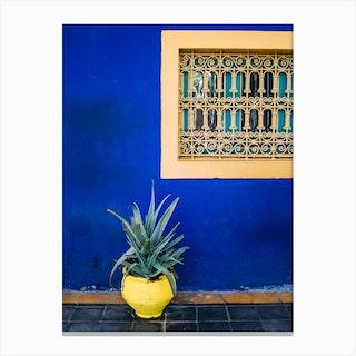 Agave On Blue Canvas Print