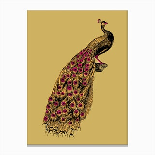 Yellow Peacock Canvas Print