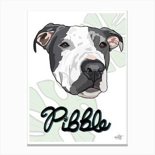 Pit Bull Dog Canvas Print