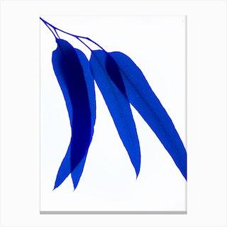Blue Leaf III Canvas Print
