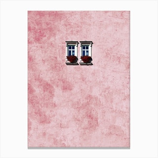 Pink Wall Canvas Print