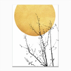 Sunshine Of My Life Canvas Print