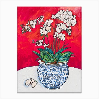White Orchid In Chinoiserie Pot Canvas Print