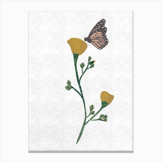 Poppy And Butterfly Canvas Print