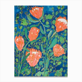 Coral Proteas Painted On Blue Canvas Print