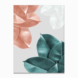 Blush Leaves Canvas Print