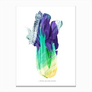 Paksoi Canvas Print