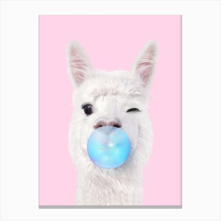 Bubblegum Lama Canvas Print