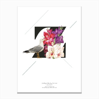Botanical  Alphabet Z Canvas Print