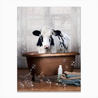 Cow In A Bathtub Canvas Print