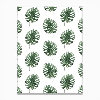 Monstera Leaf Pattern Canvas Print