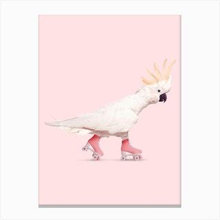 Rollerskating Cockatoo Canvas Print