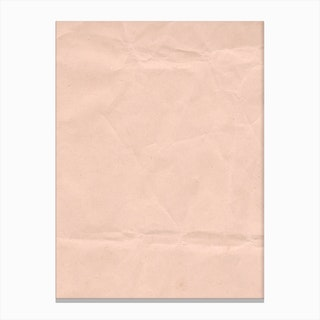 Pink Paper Canvas Print