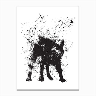 Wet Dog Canvas Print