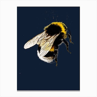 The Bee On Midnight Blue Canvas Print