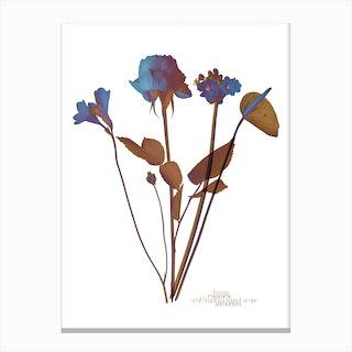Ode aux Fleurs Bleu Canvas Print
