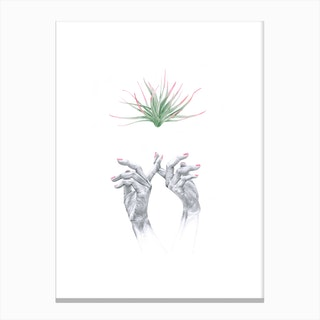 Tiara Canvas Print