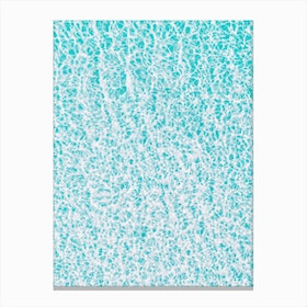 Summer Swim Canvas Print