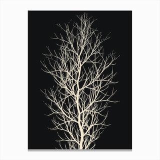 The Fairytale Tree Canvas Print