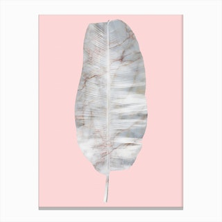White Marble Banana Leaf on Pink Wall Canvas Print