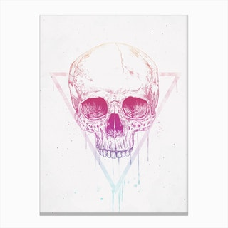 Skull In Triangle Canvas Print