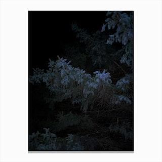Dark Black Blue Canvas Print
