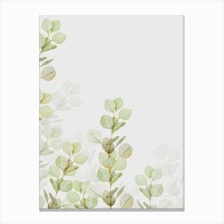 Eucalyptus Watercolour Ii Canvas Print