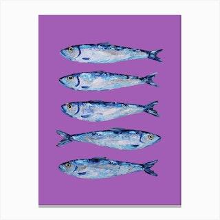 Sardines On Purple Canvas Print