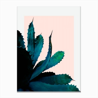 Cactus Southwestern Canvas Print