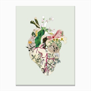 Vintage Botanical Heart Canvas Print