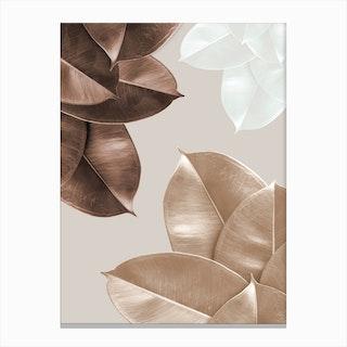 Brown Leaves Canvas Print