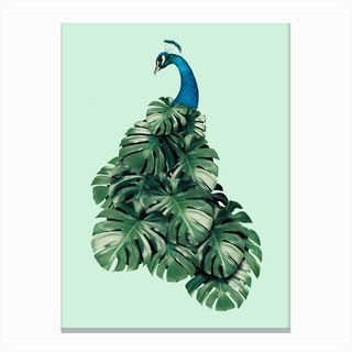 Monstera Bird Canvas Print
