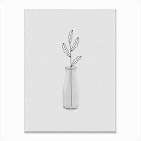 Leaf Still Life Canvas Print