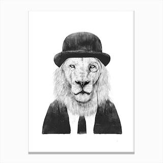 Sir Lion Canvas Print