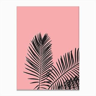 Pink Palm Canvas Print