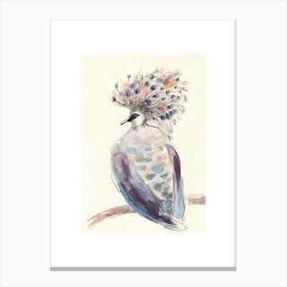 Crowned Pigeon Canvas Print
