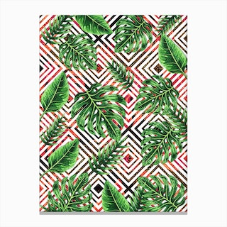 Tropical VIII Canvas Print