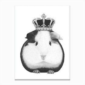 King Guinea Pig Canvas Print