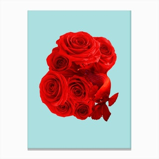 Rose Fish Canvas Print