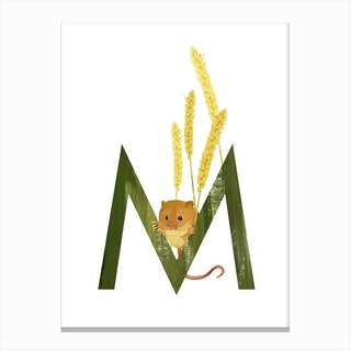 M Mouse Canvas Print