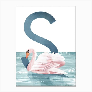 S Swan Canvas Print