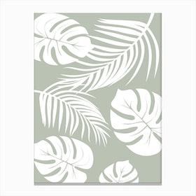 Palm Monstera Leaves Canvas Print