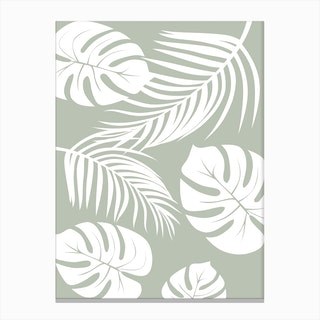 Palm Monstera Leaves Canvas Print