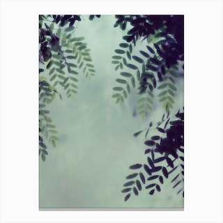 Leaves Greenery in Canvas Print