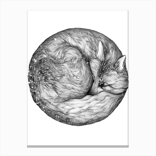 The Infinite Fox Canvas Print