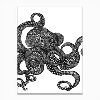 Barnacle Octopus Canvas Print