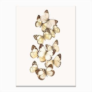 Butterflies I Canvas Print